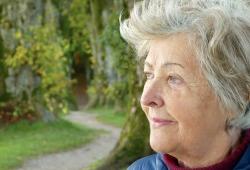 专访|细胞补充剂能否改善肝功能?
