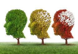 Alzheimer Dementia :中年时控制血压可降低痴呆风险