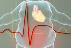 欧洲心脏病学会:补充鱼油或与心律失常有关