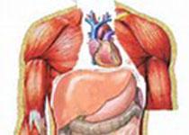 非酒精性脂肪性肝炎患者体重变化与组织学特征和血液标志物变化之间的关系