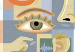 Ear Hear:单侧和双侧听力损失的儿童的言语感知和单词学习