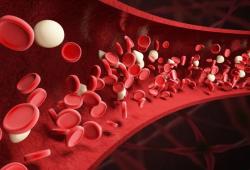 Leukemia:免疫介导的获得性再生障碍性贫血患者的T细胞基因突变分析