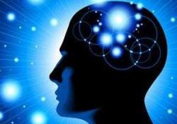 "Cerebral Cortex:年龄越大,脑功能网络<font color=""red"">变异</font>率越大"