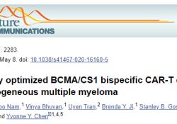 "Nat Commun:BCMA/CS1双特异性CAR可防止CAR-T治疗MM时抗原<font color=""red"">逃逸</font>的发生"