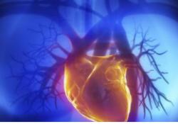 "J Heart Lung Transplant:肺血管阻力指数预测<font color=""red"">肺动脉</font><font color=""red"">高压</font>患者预后的性能优于肺血管阻力?"