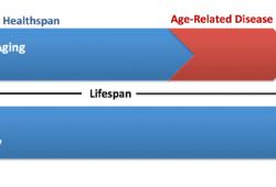 Lancet子刊:想健康长寿吗?关注这一组指标很关键!