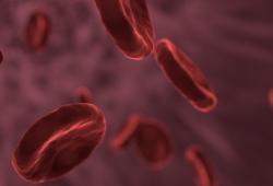 III期临床FIGARO-DKD研究结果:拜耳非奈利酮在慢性肾病合并2型糖尿病患者中达到心血管首要复合终点