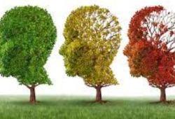 Alzheimer's&Dementia:炎症和遗传因素或导致有基础疾病的老年人痴呆风险增加