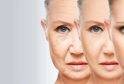 Nature:免疫细胞的衰老会加速人体全面衰老,为延缓衰老找到新方向