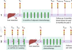 """PLoS Medicine:ctDNA预测大肠癌肝转移患者<font color=""""red"""">复发</font>风险"""