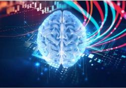 "Neurology:大脑局部代谢<font color=""red"">能力</font>下降,可有效预测认知功能减退"