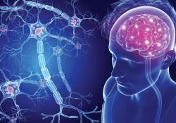 "Neurology:自体造血<font color=""red"">干细胞</font>移植,可有效改善多发性硬化预后"
