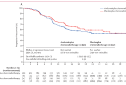 Lancet Oncology:Avelumab联合同步放化疗与单纯同步放化疗治疗局部晚期头颈部鳞状细胞癌:一项随机、双盲、安慰剂对照、多中心、3期试验