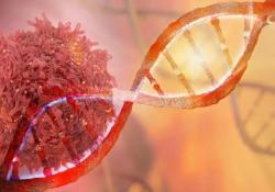 """Nature:<font color=""""red"""">新型</font>单细胞测序<font color=""""red"""">技术</font>,揭示乳腺肿瘤生长过程中持续积累遗传突变"""