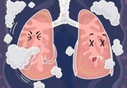 """Eur Respir Rev:肺动脉高压可进一步降低<font color=""""red"""">慢</font><font color=""""red"""">阻</font><font color=""""red"""">肺</font>患者的运动耐量"""