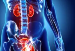 Nat Med:Durvalumab联合靶向疗法治疗晚期尿路上皮癌