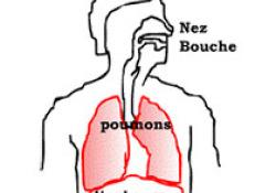 肺结核影像诊断标准