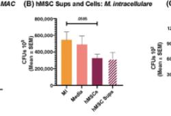 供体来源的间充质干细胞治疗慢性非结核分枝杆菌感染,临床前研究效果显著!
