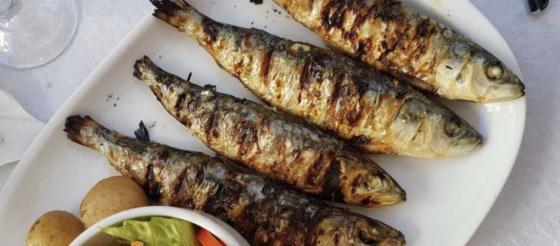 科学家证实:多吃油性鱼类或可预防2型糖尿病?!