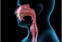 Br J Cancer:新型诊断模型鉴定食道鳞状细胞癌的相关标志物和脂质失调