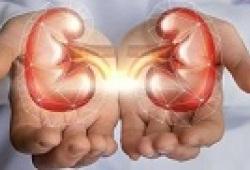 JACC:uDKK3/uCr或可预测慢性肾病患者心血管手术后急性肾损伤的风险