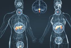 Agendia的MammaPrint®检测在NSABP B-42试验中率先展示出预测延长内分泌治疗所带来收益的能力