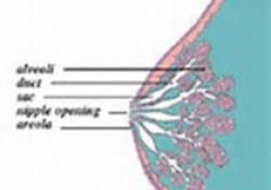 """Clin Cancer Res:<font color=""""red"""">Pyrotinib</font>(<font color=""""red"""">吡咯</font><font color=""""red"""">替</font><font color=""""red"""">尼</font>)治疗HER2+伴有脑转移乳腺癌患者的疗效:真实世界多中心研究"""