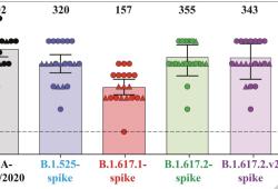 mRNA 疫苗可有效应对 delta (B.1.617.2) 变异毒株