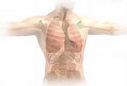 Thorax:山西省11个城市PM2.5暴露与呼吸系统疾病住院费用和住院天数的关系