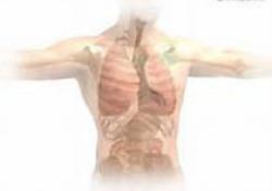 """Thorax:山西省11个城市PM2.5暴露与呼吸系统疾病<font color=""""red"""">住院</font>费用和<font color=""""red"""">住院</font>天数的关系"""