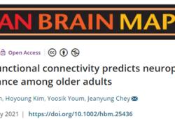 Human Brain Mapping:基于静息态功能连接的预测模型可以预测晚年神经心理学测验表现