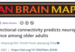 "Human Brain Mapping:基于静息态功能连接的预测模型可以预测晚年<font color=""red"">神经</font>心<font color=""red"">理学</font>测验表现"