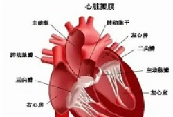 JACC:先天性心脏病术后的残余问题越大,患者临床预后越差!