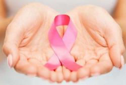 Nat Commun:双药抗体-药物偶联物:对抗乳腺癌的异质性和耐药性的利器