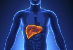 Nat Commun:WSX1:肝细胞癌的新型肿瘤抑制因子