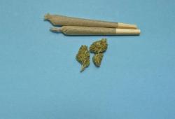 JAMA Psychiatry:大麻应该合法化吗?看看青春期吸食大麻与神经发育的关联