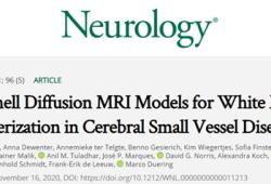 Neurology:多重扩散成像模型可用于评估脑小血管疾病的白质表征