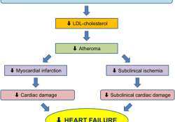 JAMA子刊:停用他汀的后果有多大?心血管事件及死亡率明显增加!