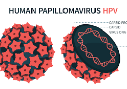 PLOS Med:目前接种覆盖率下,男女都打HPV可以促进预防病毒感染
