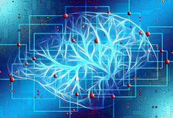 Neurology:一线抗癫痫治疗后,行昏迷诱导治疗并不增加并发症