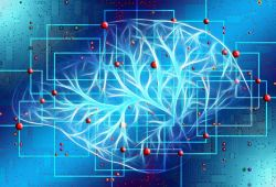 Neurology:如何高效评估化疗导致的周围神经毒性