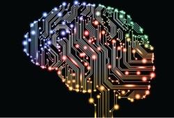 Neurology:青少年儿童脑创伤后,白质病变与行为表现相关