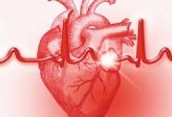 JACC:抗凝治疗的房颤患者的左心房血栓发生率
