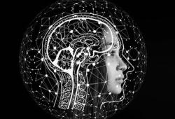 梅斯神经病学进展(第005期)