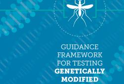世卫组织发布新的转基因蚊子检测指导框架(第二版)