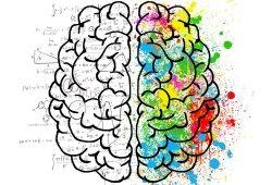 Neurology:神经丝蛋白水平,或可反映多发性硬化慢性白质炎症