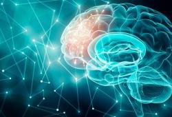 Neurology:路易体基本患者,路易体分布情况或与种族无关