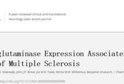 Neurol Neuroimmunol Neuroinflamm:组织谷氨酰胺酶表达与多发性硬化的进展有关