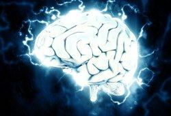 Front Neurosci:双胞胎研究首次揭示了创伤后应激障碍和偏头痛的遗传风险因素