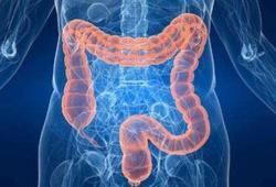 JGH:接受非肠道选择性生物疗法治疗炎症性肠病患者的COVID-19 发生率较低